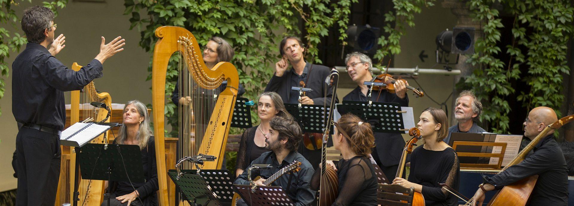 Harfe Harfen Arpa Harpe  Harpa